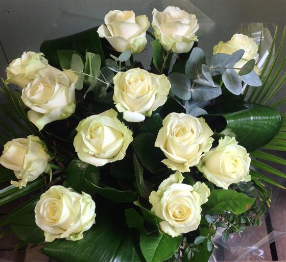Twelve heavenly white roses mightylinksfo